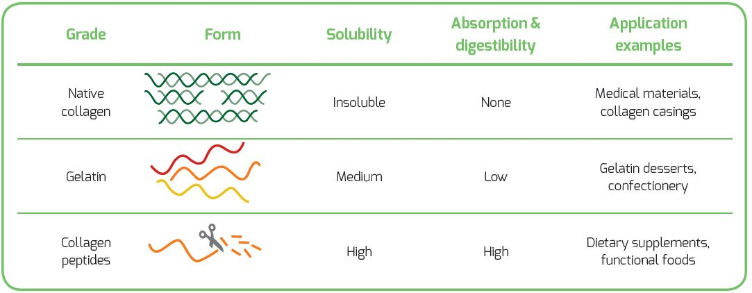 differences grades of collagen