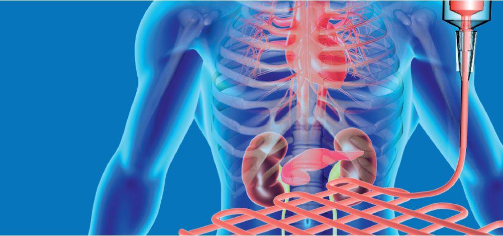 GelMA biomaterials