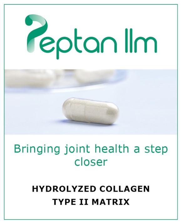 Peptan IIm, hydrolyzed collagen type II matrix