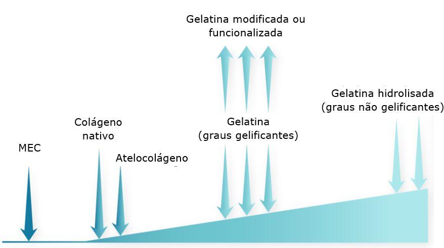 Principais formas físicas de colágeno