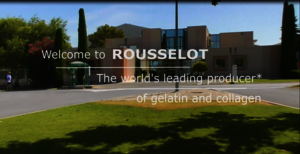 A video which explains about the career and life at Rousselot