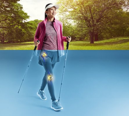 Peptan Collagen for joints health