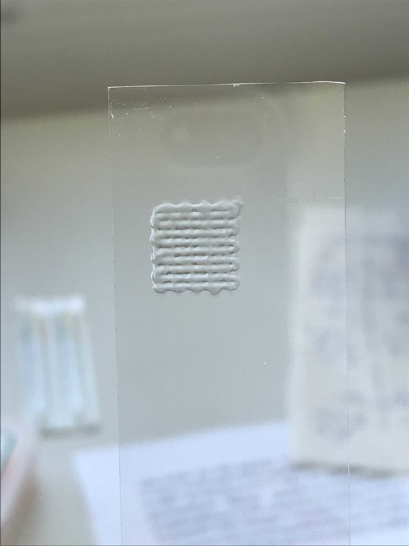 [Translate to Chinese:] Thin layer of Gelatin in 3D printing